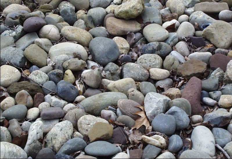 Which Of These Rocks Is Designed.jpg