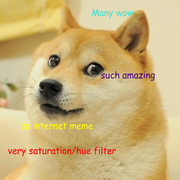 doge24.png